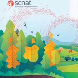 Übermässige Stickstoff- und Phosphoreinträge schädigen Biodiversität, Wald und Gewässer