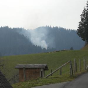 Falls nötig, Schlagabraum emissionsarm verbrennen